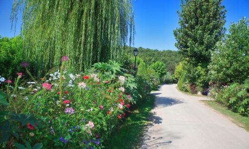 Nature au Camping Le Paradis, allée principale fleurie
